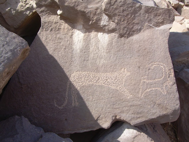 Neolithic petroglyphs discovered in Egypt's Aswan
