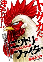Rooster Fighter 3