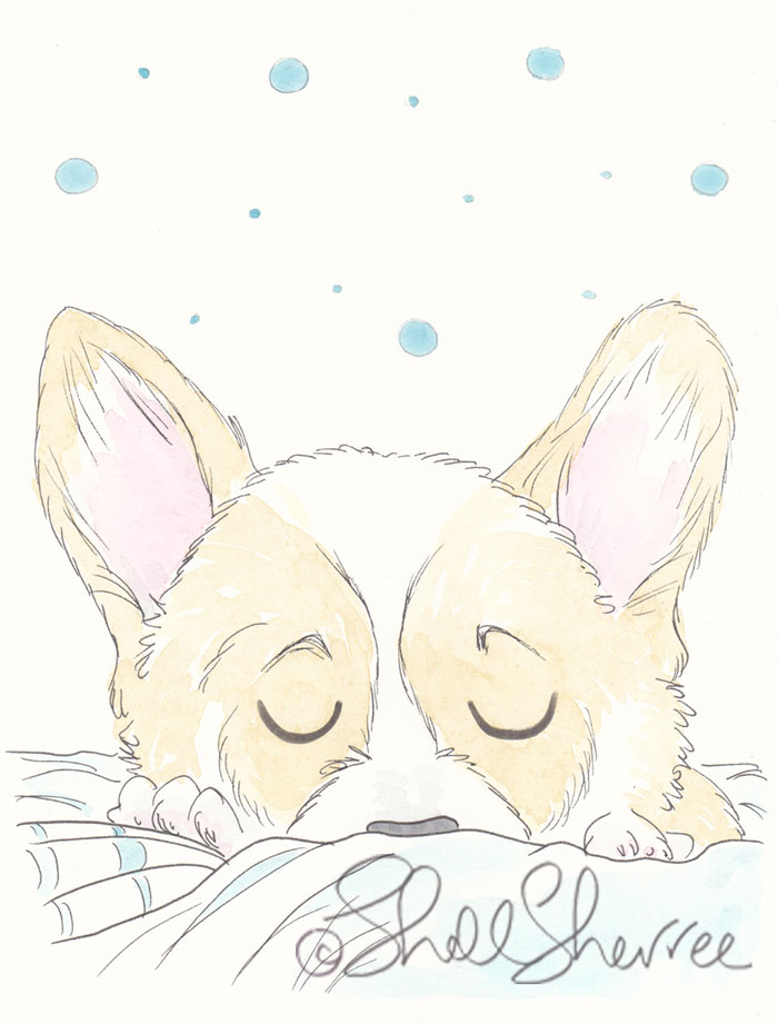A Spot of Corgi Napping dog pet illustration  © Shell Sherree all rights reserved