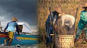 Pemerintah Wajib Realokasi Anggaran Untuk Petani dan Nelayan