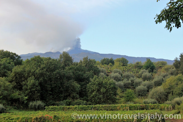 Active Mt. Etna volcano over vineyards