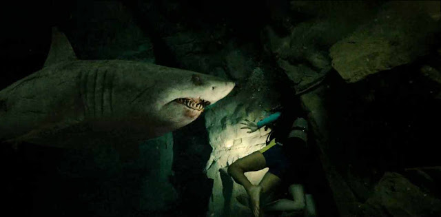 47 Meters down uncared