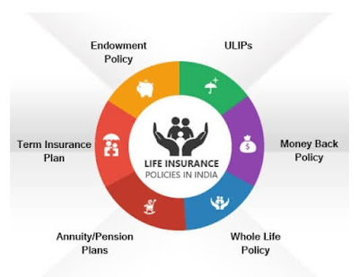 Best insurance company