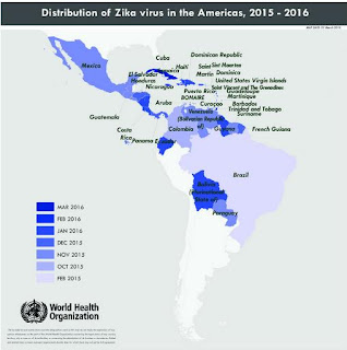 http://who.int/emergencies/zika-virus/situation-report/31-march-2016/en/