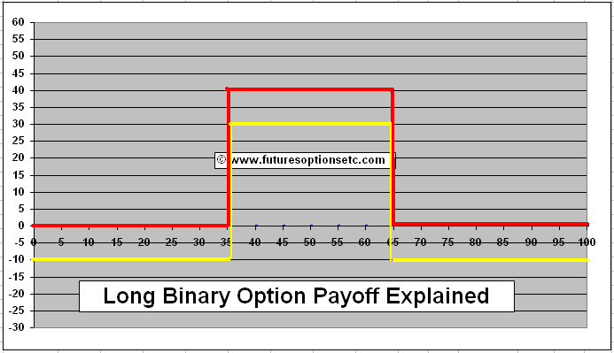 Binary options tunnel