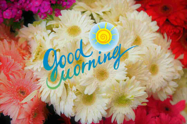 Beautiful good morning with nice white flowers bouqet