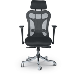 Ergo Ex Mesh Chair by MooreCo