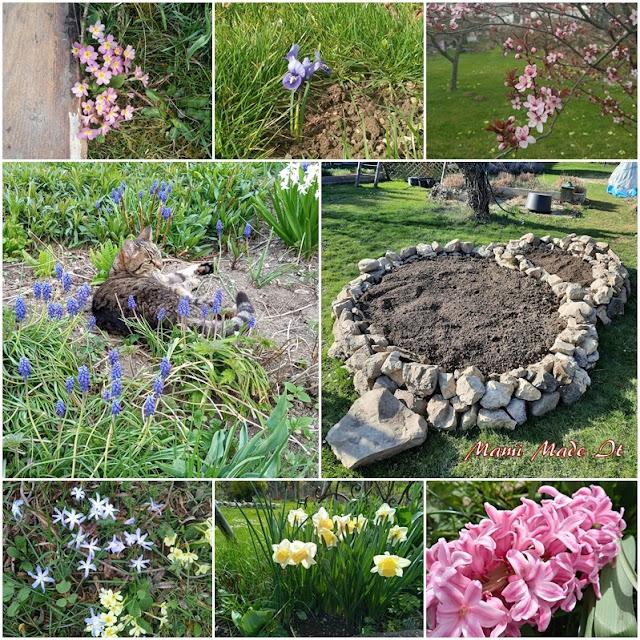 Frühlingsimpressionen - Spring impressions