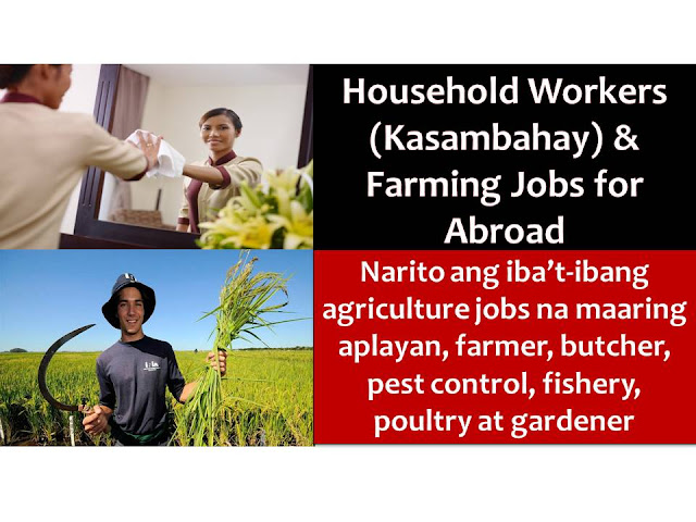 Another job opportunities for Filipinos who want to try their luck working in other countries as household workers or domestic workers and in the field of agriculture. Different countries around the world are looking for farmers, butchers, poultry workers, pest controllers,  fishery workers and gardeners.   If you are interested, scroll down below to see the list of job orders from the website of Philippine Overseas Employment Administration (POEA).   Please be reminded that we are not a recruitment industry and we are not affiliated to any of the agencies mentioned here below. All the job orders were taken from the POEA jobs order website and were only linked to agency details for easier navigation for the visitors.
