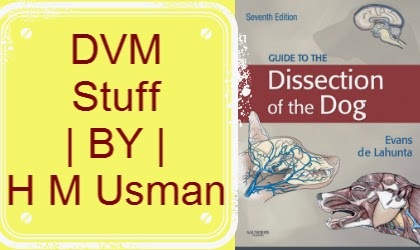 guide to the dissection of the dog 7th edition.pdf