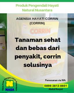 Agensia Hayati Corrin