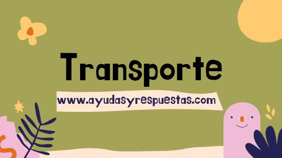 transporte y distribucion