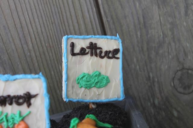 Graham Cracker Lettuce Seed Sign Hello Cupcake