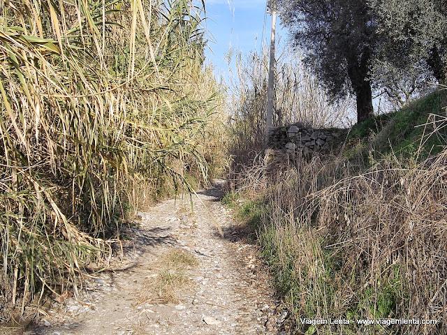 Parte final da estrada explorada