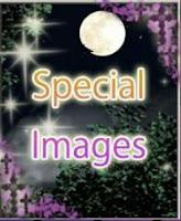 http://otomeotakugirl.blogspot.com/2015/10/twilight-romance-special-images-cgs.html