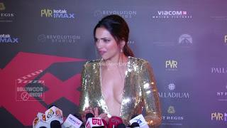 Deepika Padukone Promoting   Return of Xander Cage in India in Golde Gown 61 .xyz.jpg
