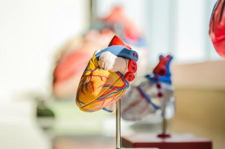 Corazón - Colesterol