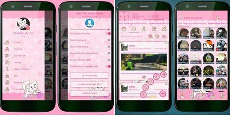 bbm pink kucing terbaru