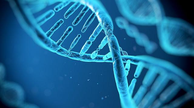 https://www.oblogdomestre.com.br/2018/05/AcidoDesoxirribonucleico.DNA.CienciaESaude.html