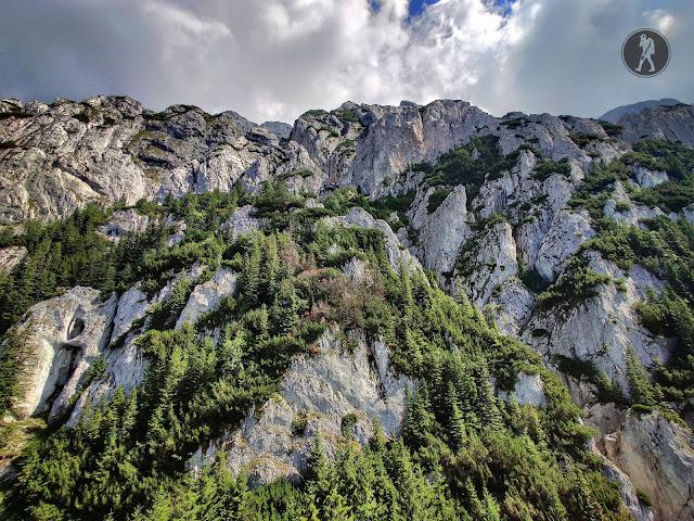 Traseu în Munții Piatra Craiului: Plaiul Foii, Refugiul Şpirlea, La Zăplaz