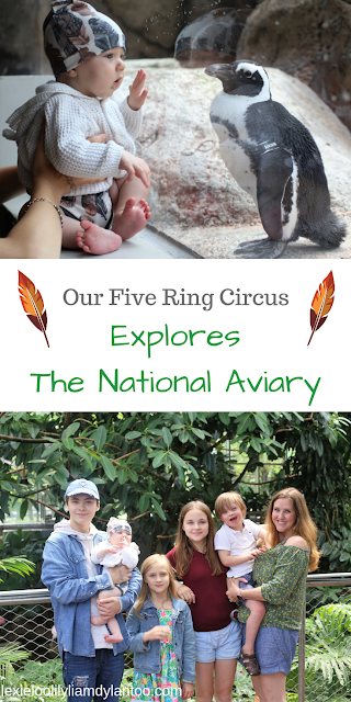 Our Five Ring Circus Explores The National Aviary in Pittsburgh