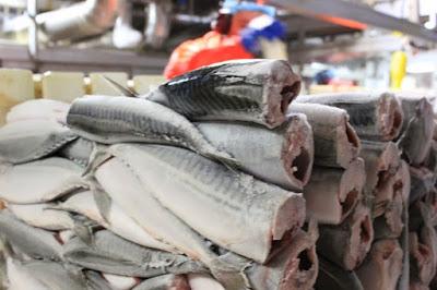 Best Mackerel Hg Frozen Fish (Headed and Gutted)