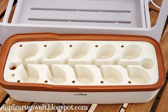 Anzuchtkasten für Kokosquelltabs | BoQube Romberg - Gartenblog Topfgartenwelt