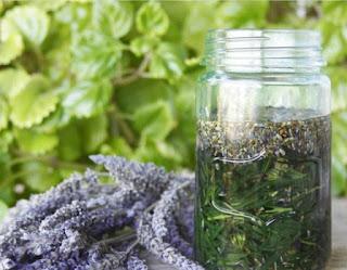 como curar la psoriasis naturalmente con hierbas