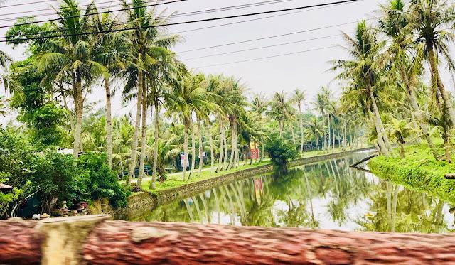Không gian xanh mát của cây cối và dòng nước