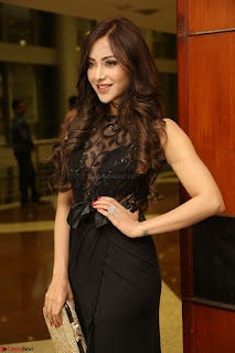 Angela Krislinzki in Transparent Black Gown at Rogue Movie Teaser Launch 1st March 2017 102.JPG