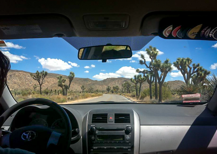 Pourquoi partir erasmus voyage stage États-Unis Los Angeles Joshua Tree