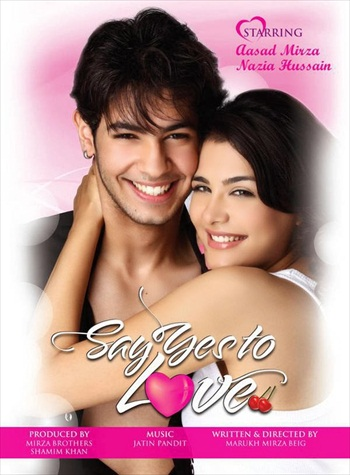 Say Yes To Love 2012 Hindi Movie Download