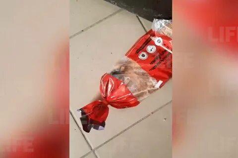 Житель Кубани выбирал в продуктовом магазине хлеб, когда заметил в упаковке объевшуюся мышь — видео
