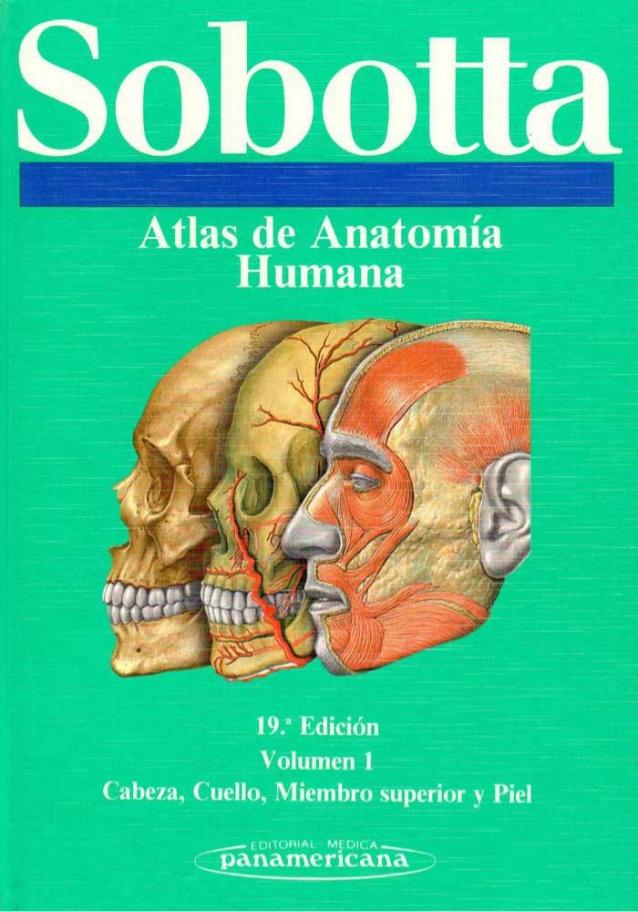 Libros en PDF de Kinesiología y Fisioterapia: Sobotta, Atlas de ...