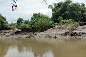 Tebing Bengawan Solo Longsor, Rumah Warga Terancam Amblas