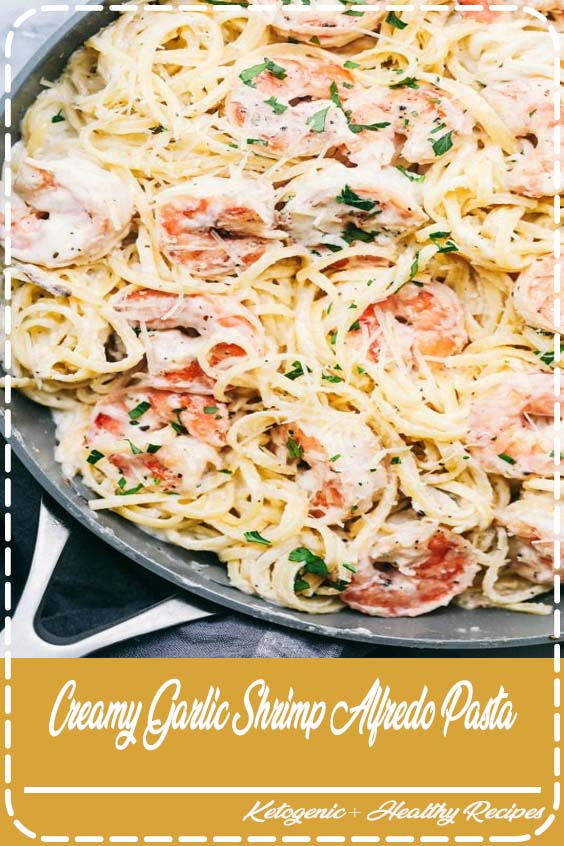 Creamy Garlic Shrimp Alfredo Pasta is such a classic meal that is brought to its BEST wit Creamy Garlic Shrimp Alfredo Pasta