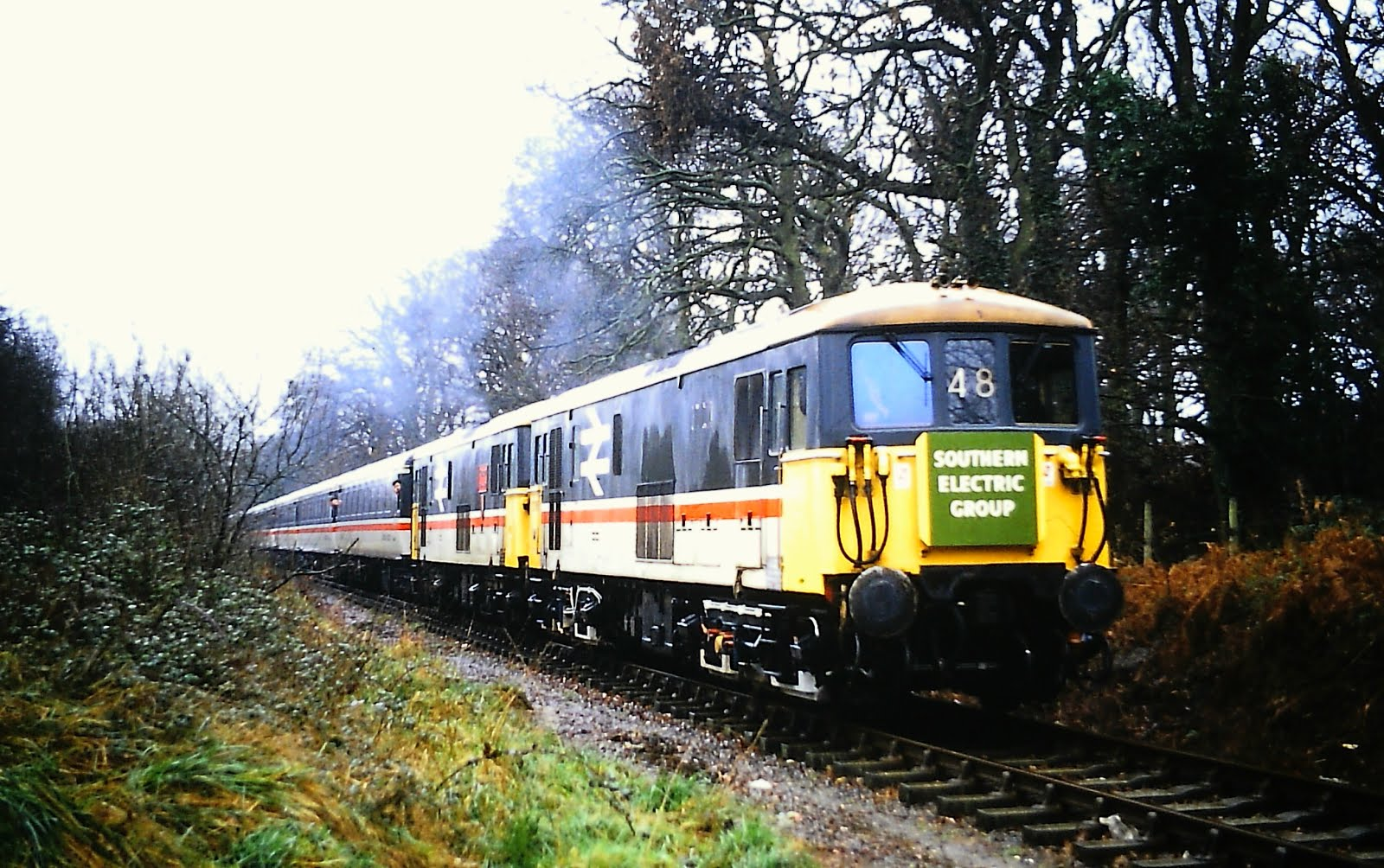 SEG Railtour at Oakdene Woods