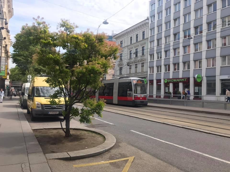 Vienna streets, tram vienna