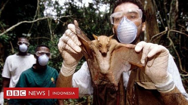 Covid-19 Bukan Pandemi Terakhir, Ilmuwan Peringatkan Ada Penyakit Baru