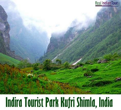 Indira Tourist Park Kufri Shimla