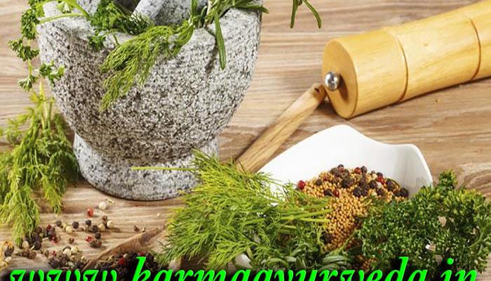 creatinine treatment in Ayurveda - karma Ayurveda