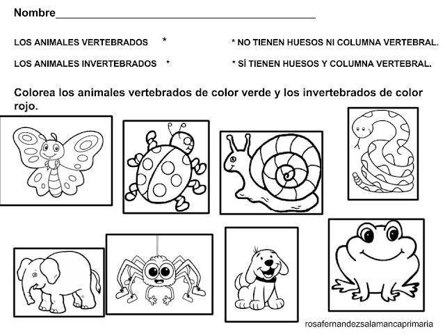 Maestra De Primaria: Animales Vertebrados E Invertebrados
