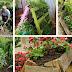 Παλέτες στον κήπο: χρήσιμες DIY ιδέες κηπουρικής
