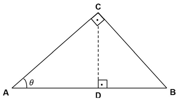 mackenzie 2020 questão matematica 19