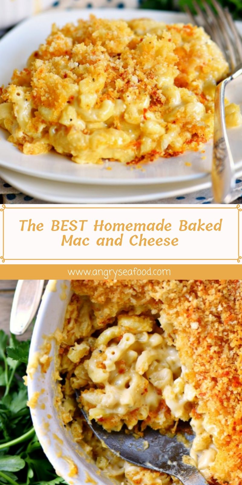 The BEST Homemade Baked Mac and Cheese
