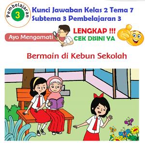 Kunci Jawaban Kelas 2 Tema 7 Subtema 3 Pembelajaran 3 www.simplenews.me