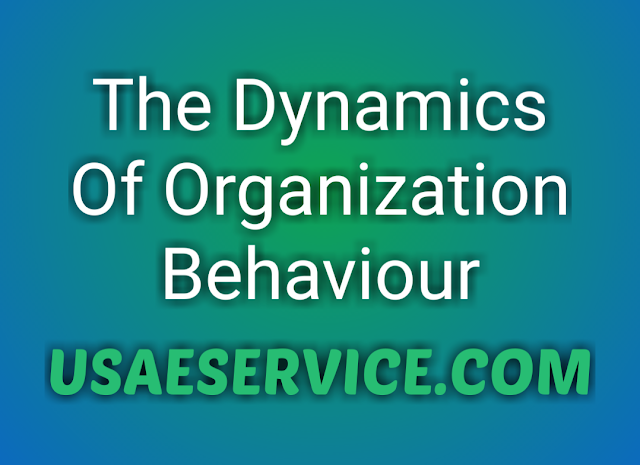 Key elements of Dynamics Organization Behaviour
