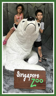 Singapore Zoo and Night Safari with the family review