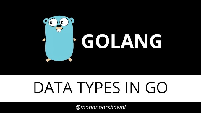 Golang Tutorial - 4 - Data Types in Go