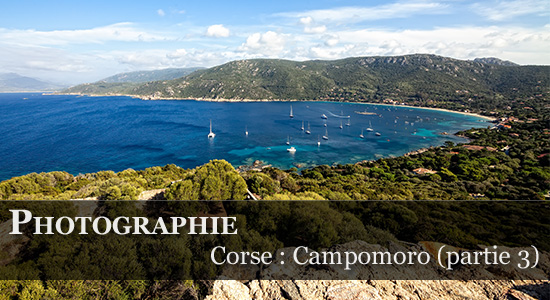 Synoptic Productions : Campomoro et sa Tour Génoise
